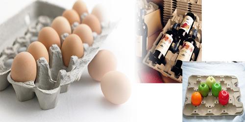 egg trays and bottle trays